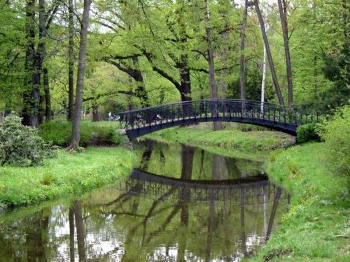 020506 park szczytnicki kladka1