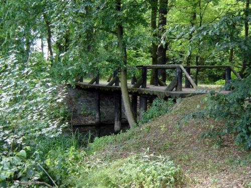 100606 kladka w parku soltysowickim