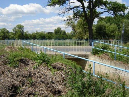 100606 most wilczycki