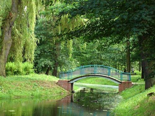 180606 kladka w parku lesnickim