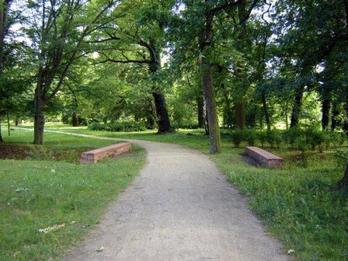 180606 w parku lesnickim 3