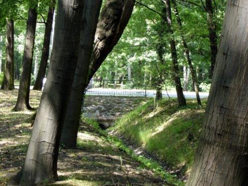 180606 w parku zachodnim