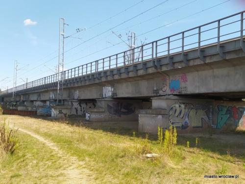 IMG 20200801 most kolejowy nad Widawa