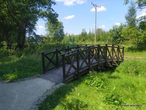 IMG 20200816 Park Bienkowicki1
