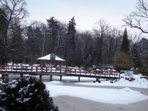 Ogrod Japonski zima