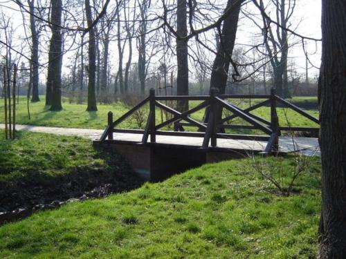 park brochowski kladka6