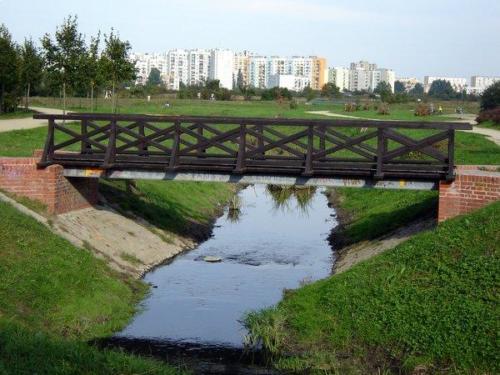 park tysiaclecia1